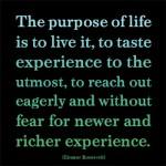 purpose quote - Eleanor Roosevelt