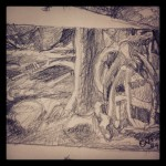 Detail - Sketch - Bag Harbour, Gwaii Haanas National Park, Haida Gwaii.