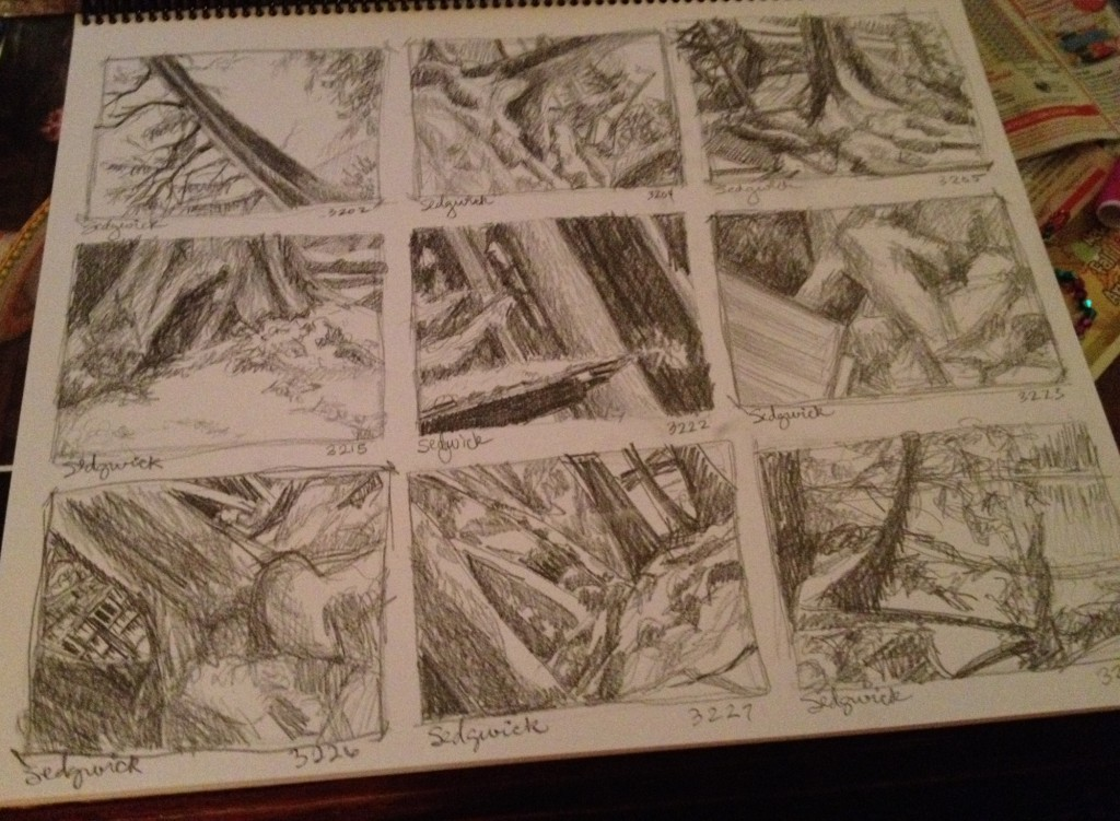 Thumbnail Sketches 4 - Janice Tanton, Gwaii Haanas National Park
