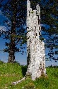 Skedans Pole - Gwaii Haanas National Park, 2012