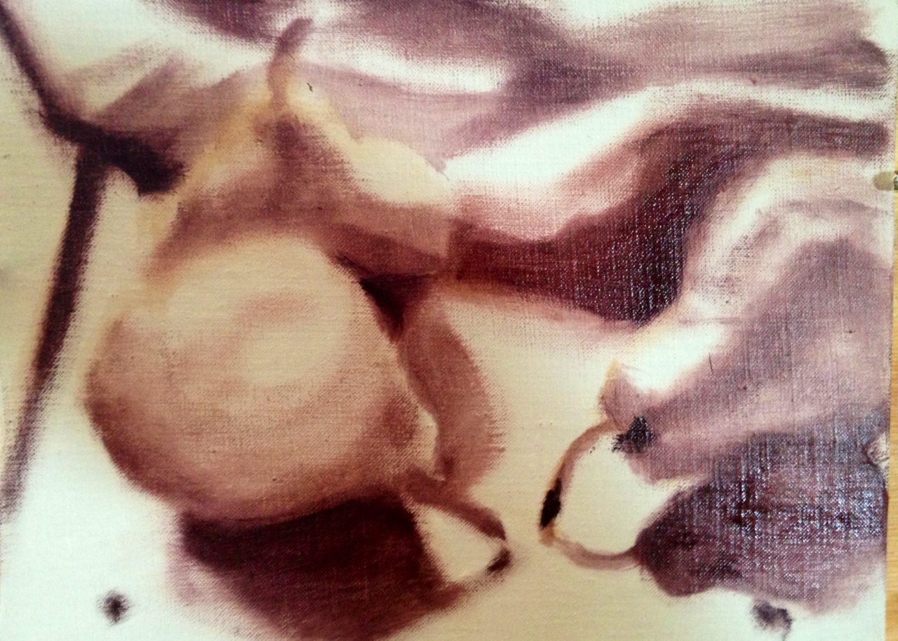 underpainting by Janice Tanton