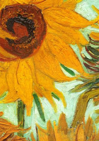 Vincent Van Gogh Sunflowers 1888