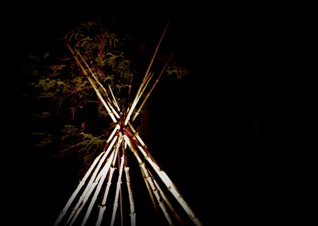 Outdoor Installation: No ReZervations Required - ©2012 Janice Tanton. Lodgepole pine, light, rope.