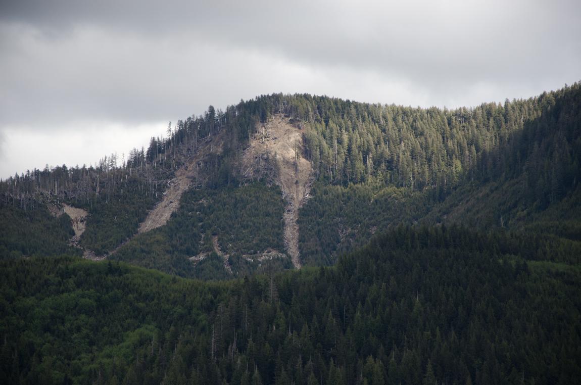 Clearcut and Landslide - Moresby Island, Haida Gwaii