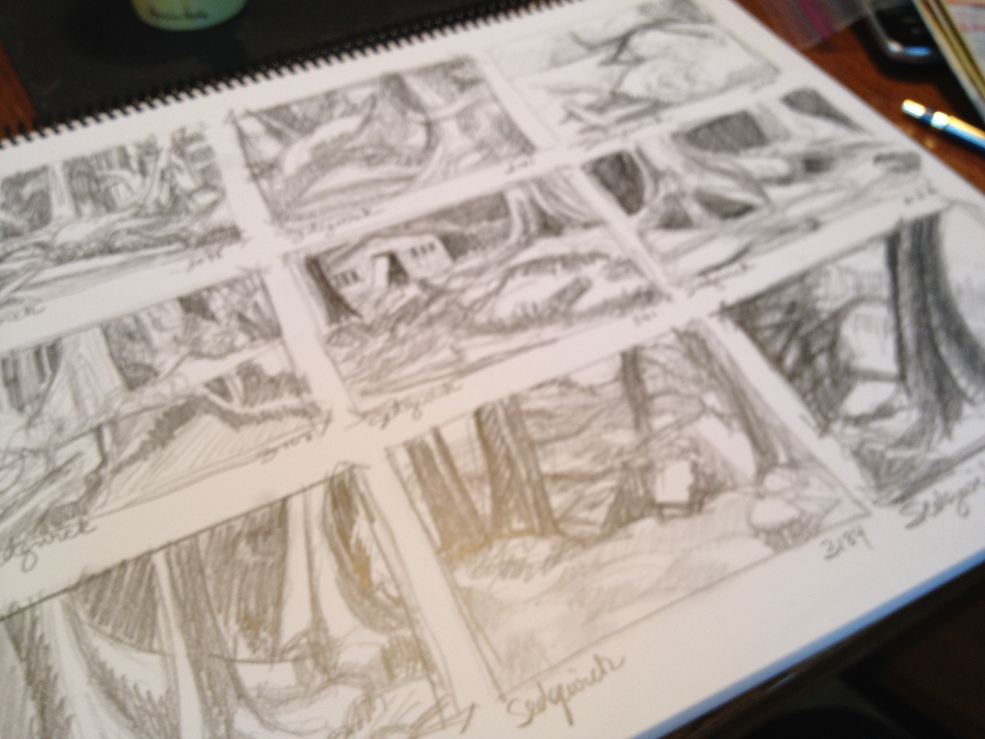 Thumbnail Sketches 3 - Janice Tanton, Gwaii Haanas National Park