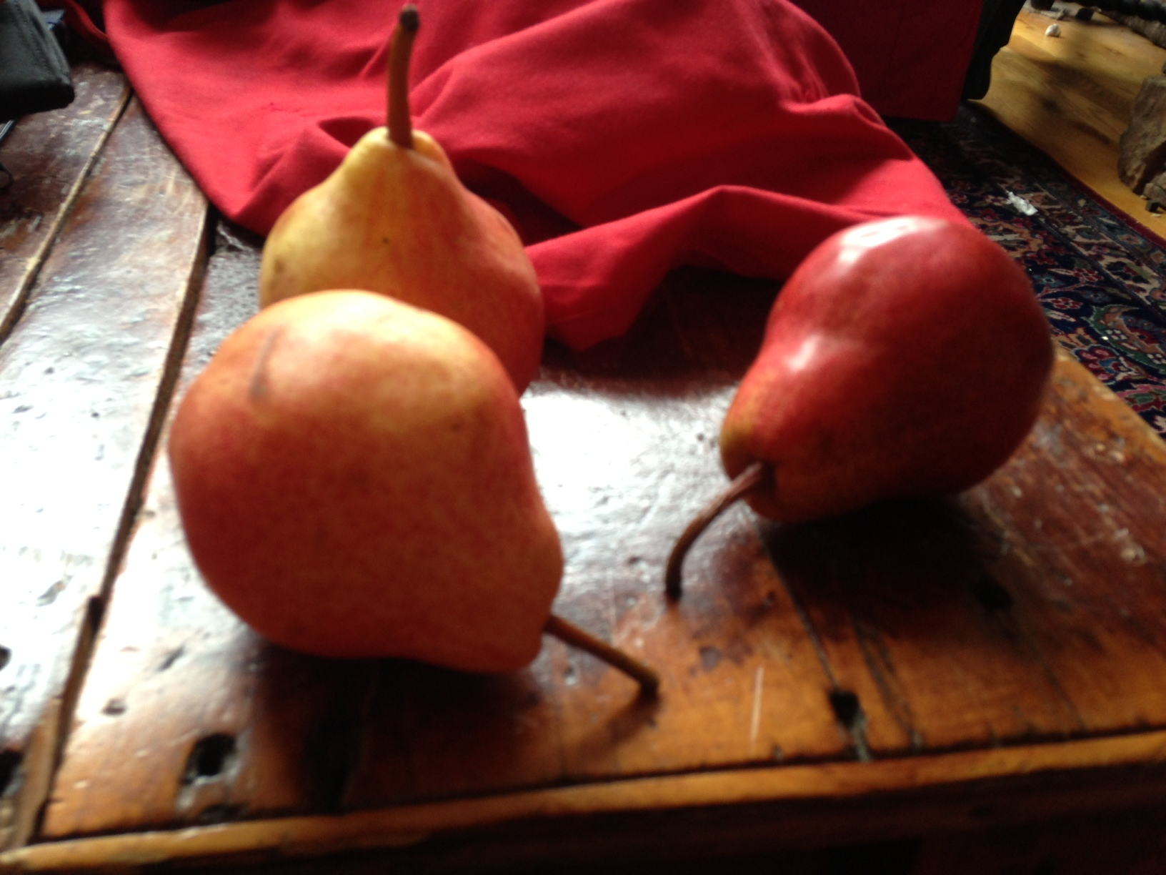 Janice Tanton, red pear, painting, chemotherapy
