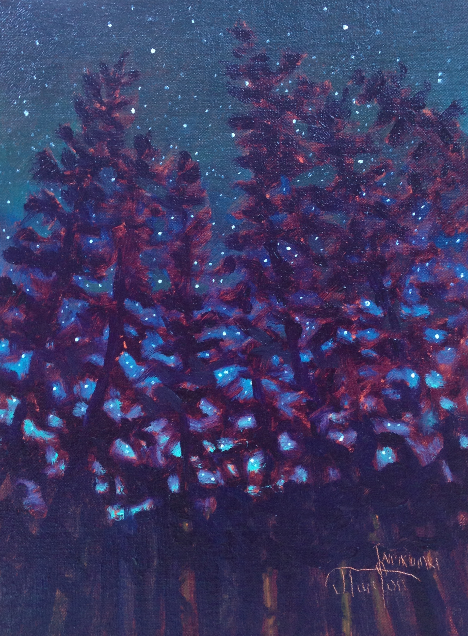 """Waiparous Starry Night"" ©2013 Janice Tanton. Oil on linen panel. 6""x8"""