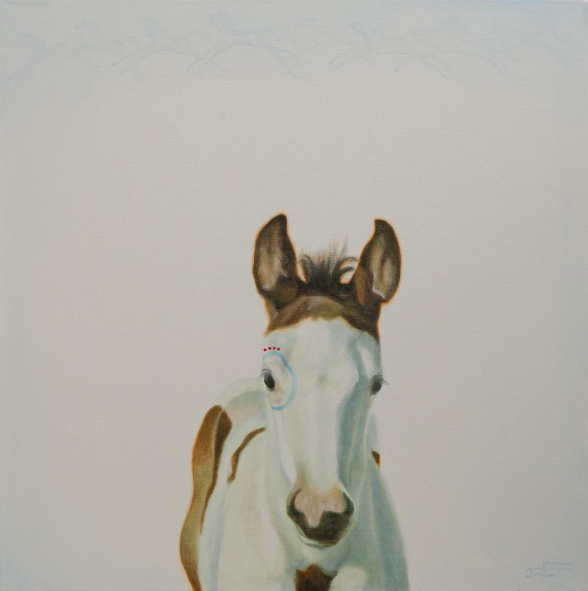 """""""Little Medicine Horse"""" ©2014 Janice Tanton. Oil on linen. 30""""x30"""""""
