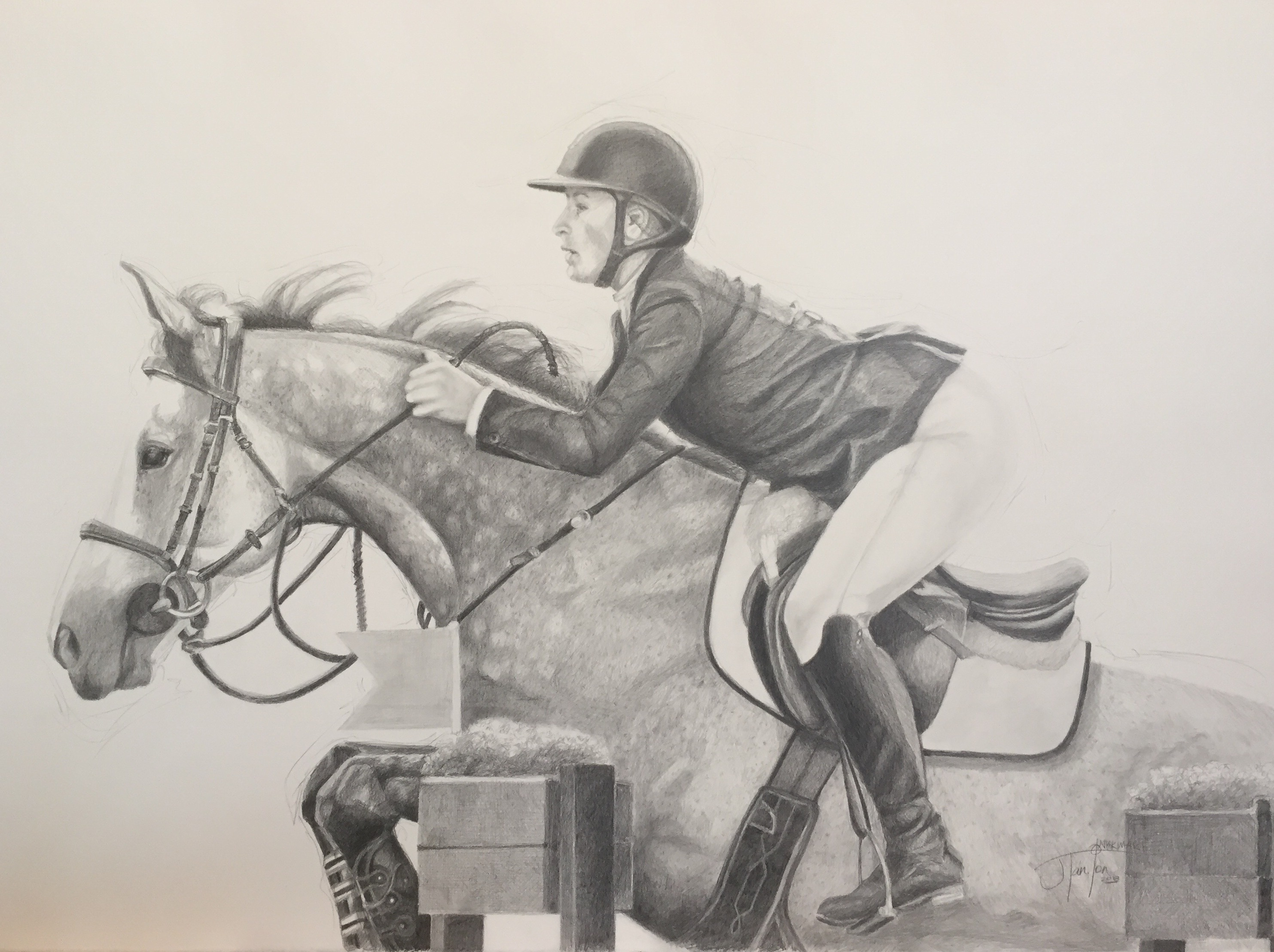 """""""Holleigh & Hannah"""" © Janice Tanton 2018. Pencil on 140 lb Arches, hot press. 30""""x22. Grey horse with rider jumping over a fence"""
